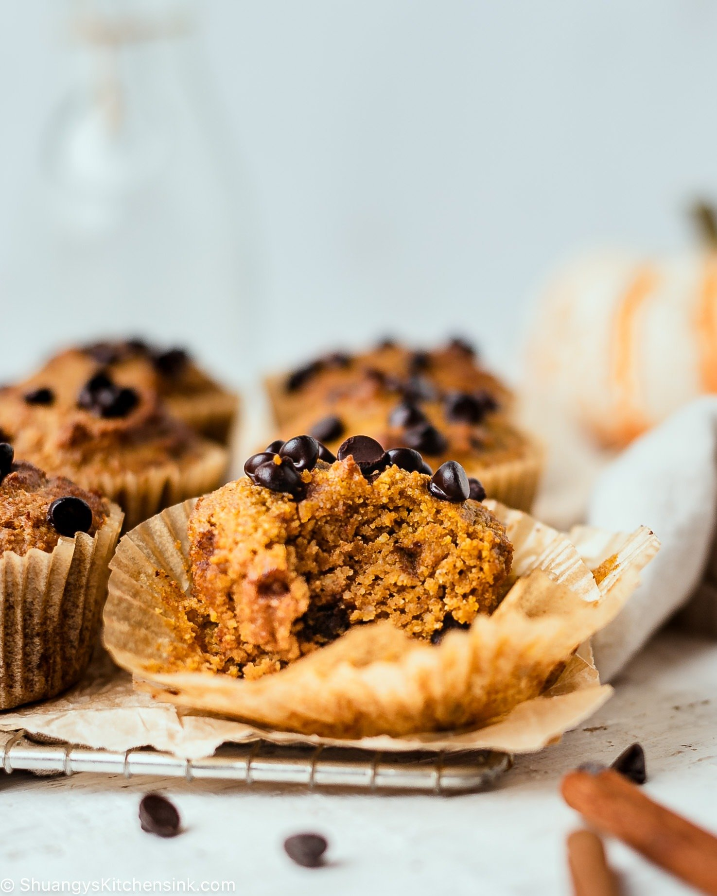 There is a pumpkin chocolate chip muffins with a bite taken from it. It looks soft and moist and the pumpkin muffin is paleo and gluten-free and topped with vegan chocolate chips