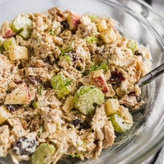 A bowl of chicken salad with celery, apples, cranberries and dill on top.
