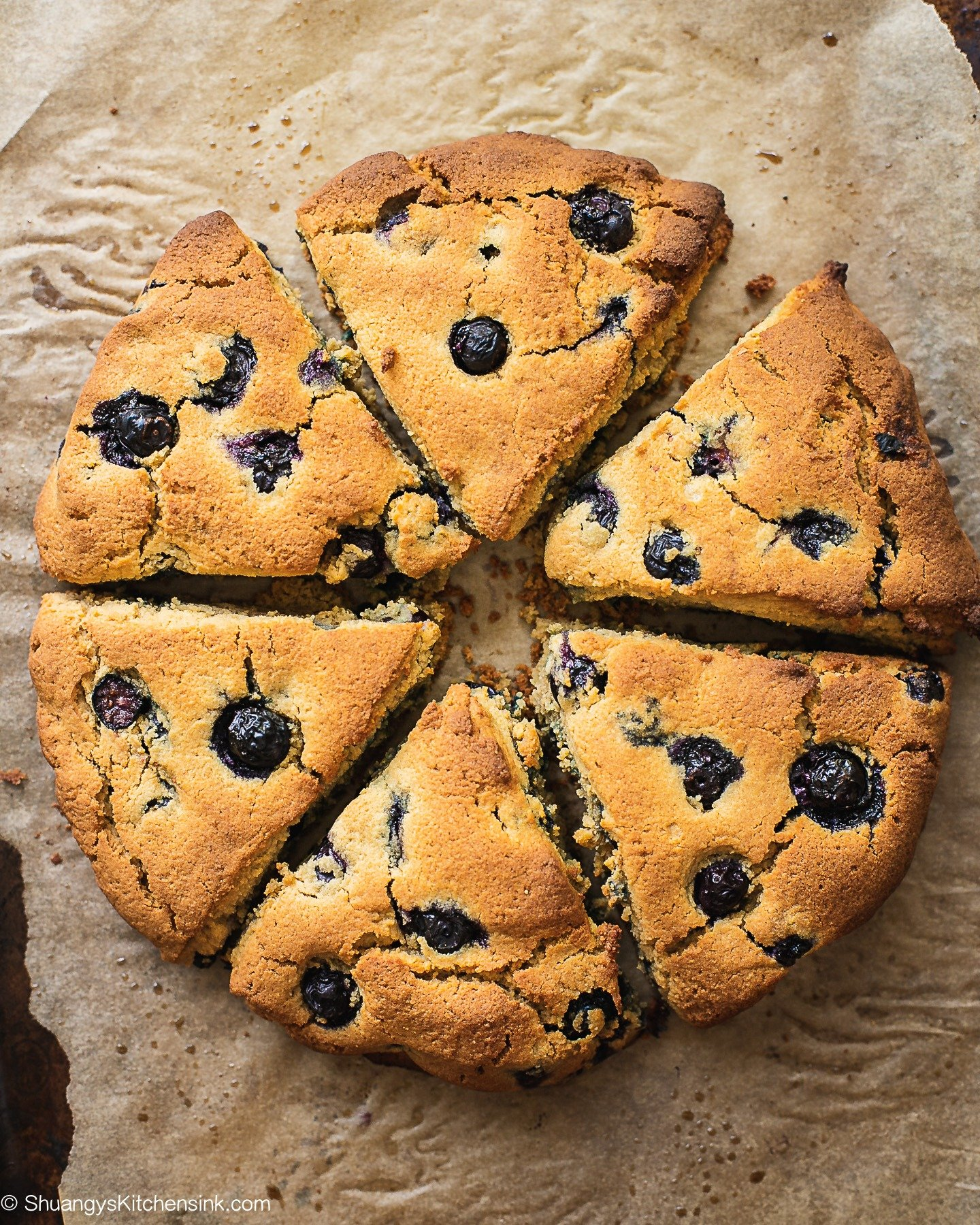 Freshly baked healthy blueberry scones that just cake out of the oven. The outside is golden brown.