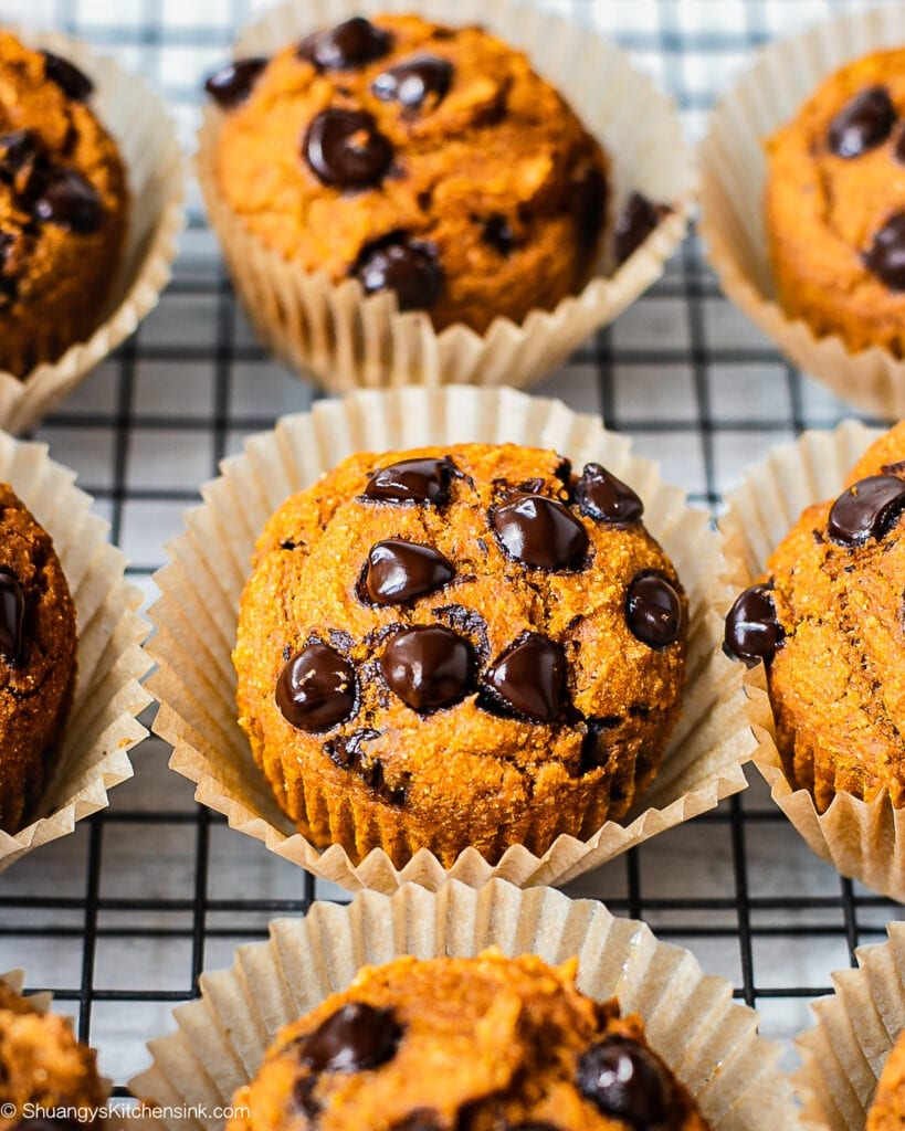 Freshly baked vegan whole wheat pumpkin muffins with chocolate chips on top are placed on a cooling rack.